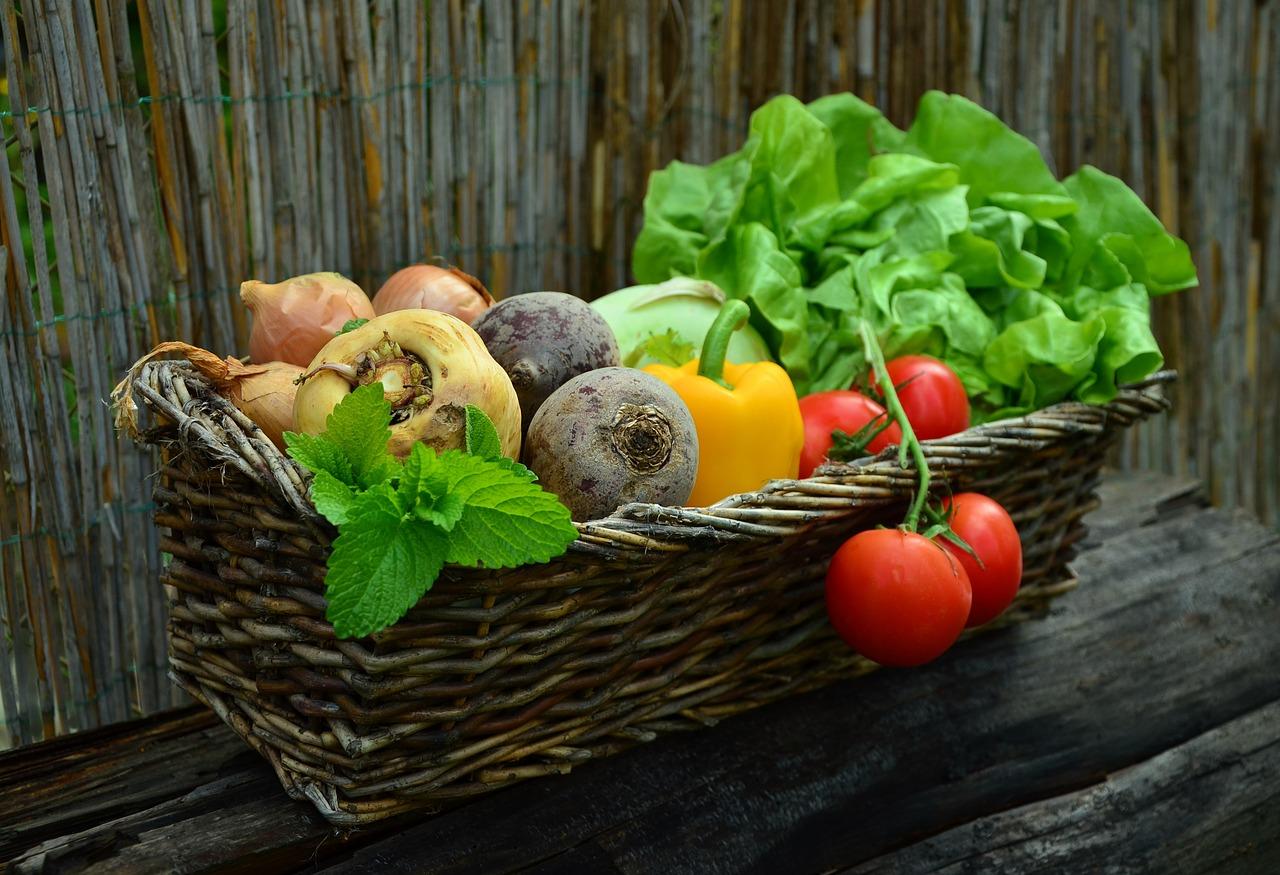 【家庭菜園】コンパニオンプランツの組み合わせと効果